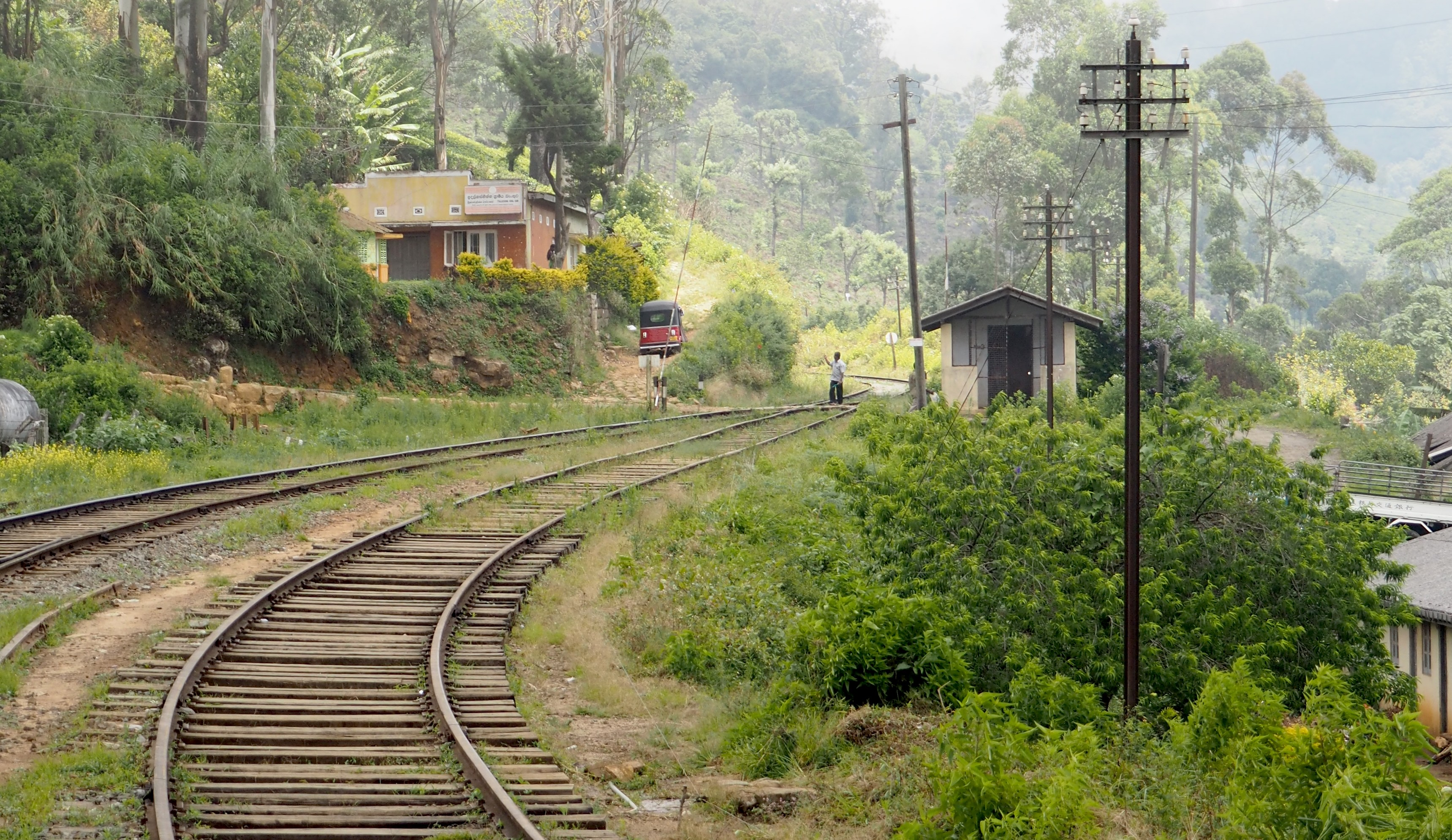 trainroad while backpacking in sri lanka