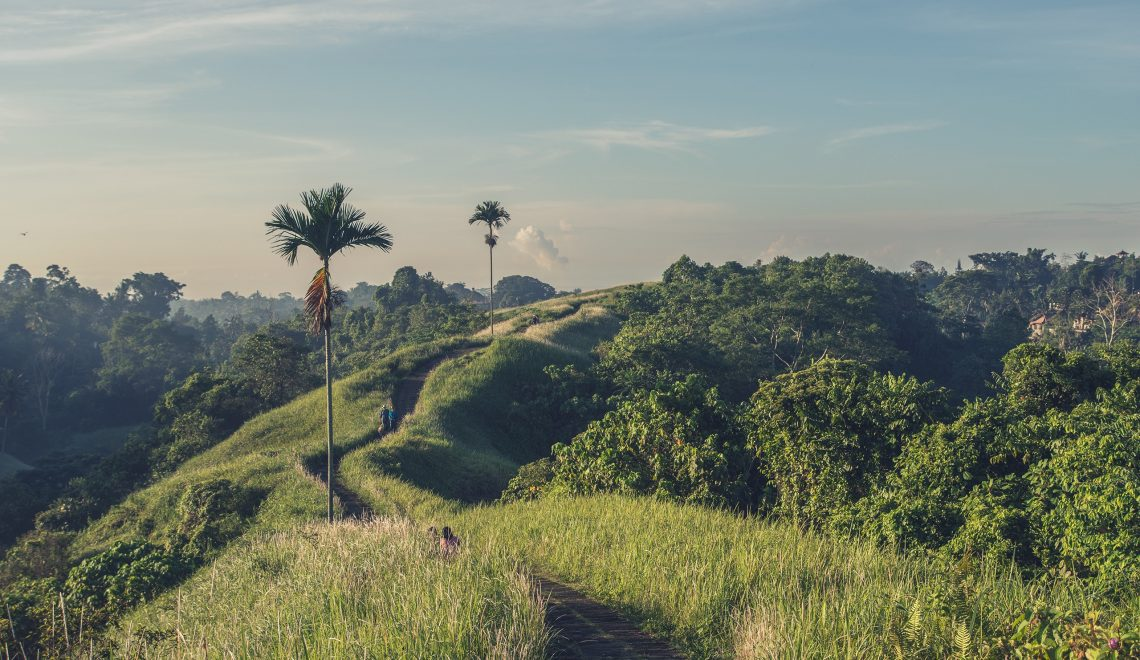 15 Things to do in Ubud – Welcome to Paradise